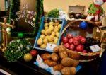 us potato fest culinary best kdu university college varieties