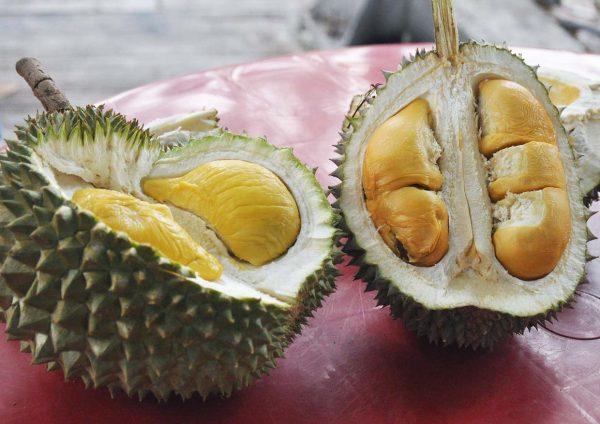 durian king bukit bintang kuala lumpur musang king black thorn