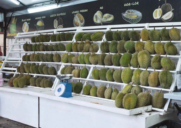 durian for a cause all you can eat buffet durian king ttdi