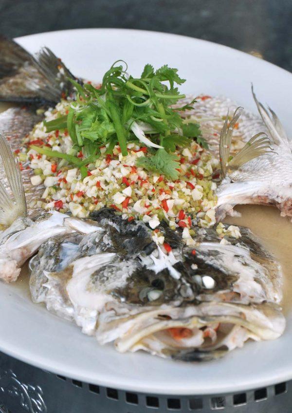 aroi dee thai restaurant palm garden hotel ioi resort city fish