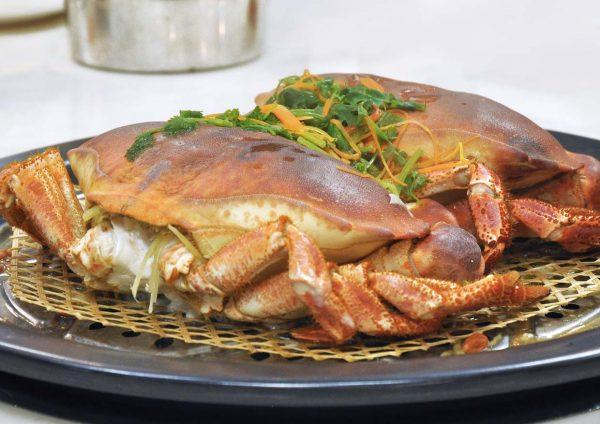 kungfu steam seafood restaurant bandar puteri puchong cny french edible crab