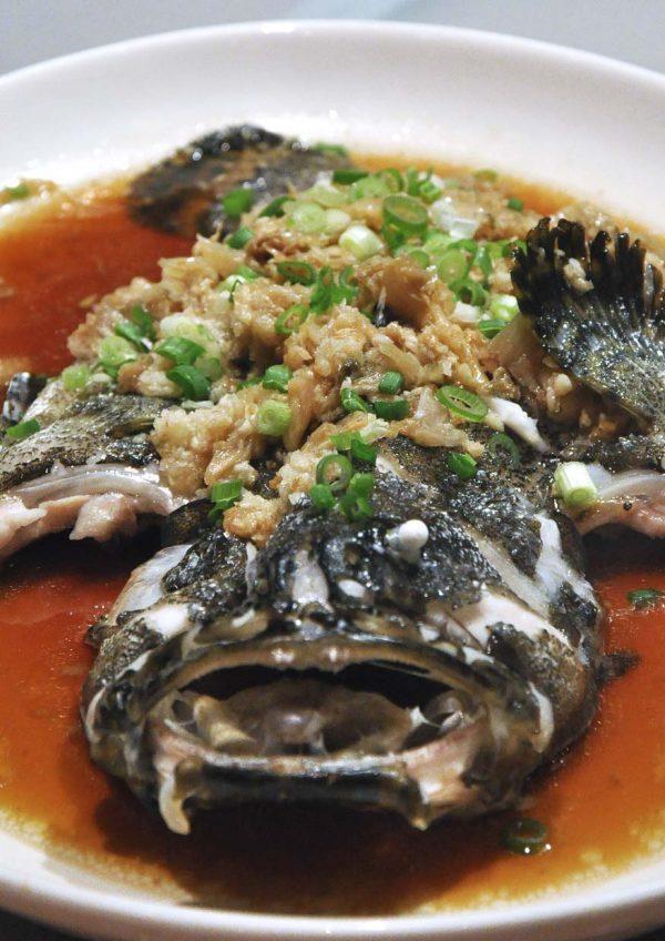 shang palace shangri-la hotel kuala lumpur cny fish