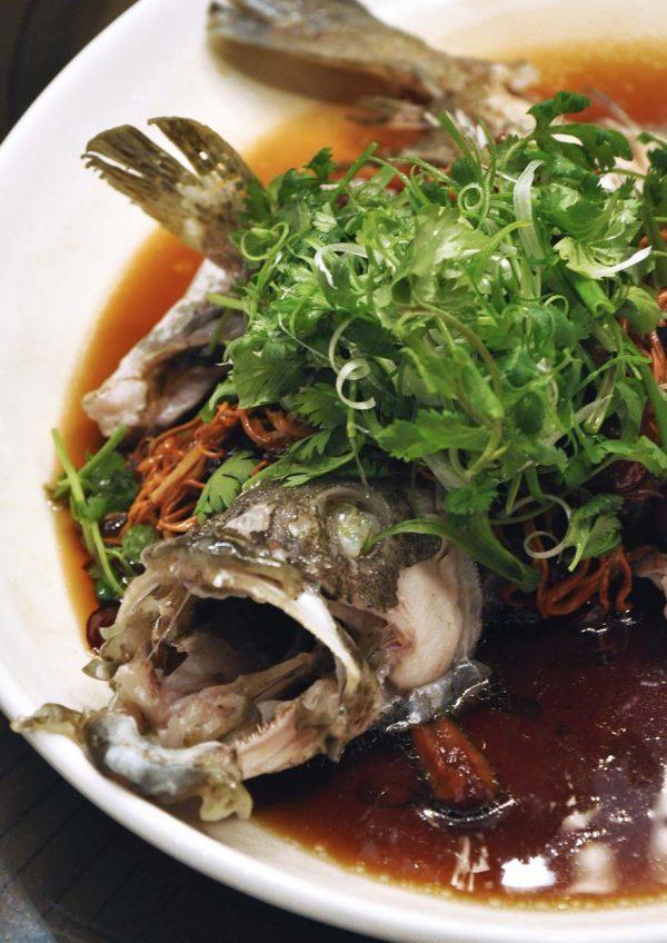 tao chinese cuisine interContinental kuala lumpur cny fish