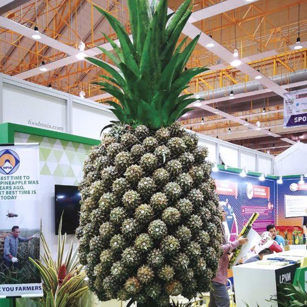 hppnk 2017 maeps serdang hppnk25 pineapple
