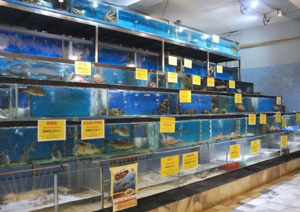 makan-makan trail citta mall ara damansara unique seafood aquarium