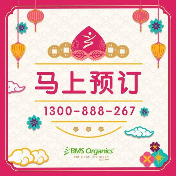 bms organics chinese new year prosperity treasure pot order