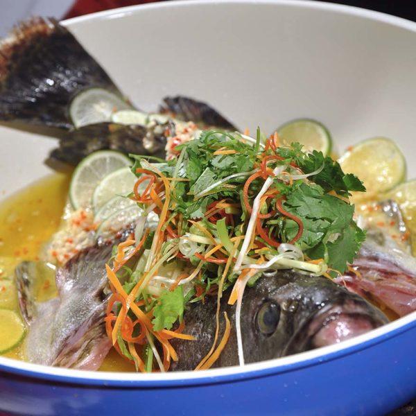 china treasures sdcc chinese new year grouper fish