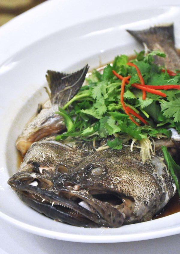 dynasty restaurant renaissance kuala lumpur hotel cny fish