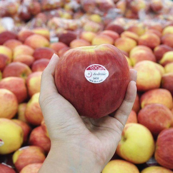 ambrosia apples new zealand heartland group gch retail malaysia
