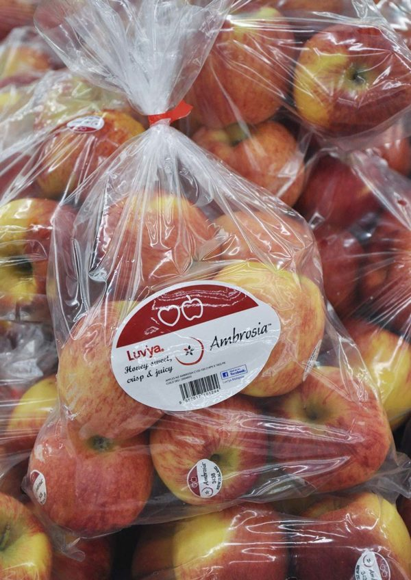 ambrosia apples new zealand heartland group luvya