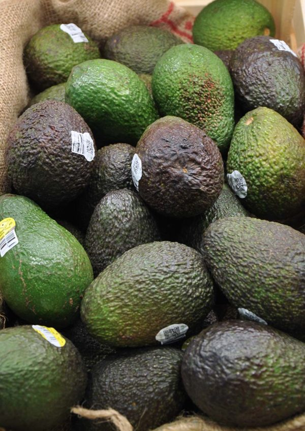 taste australia avocado superfruit