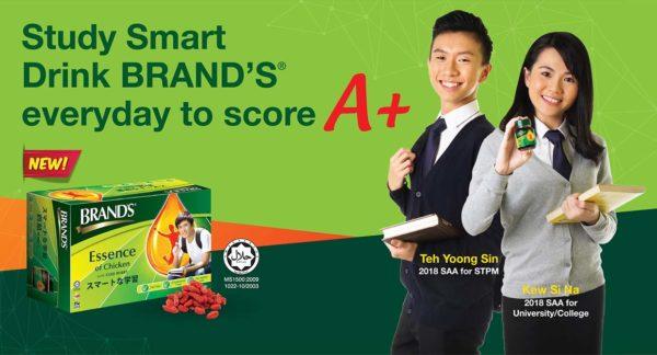 brands essence of chicken with goji berry study smart