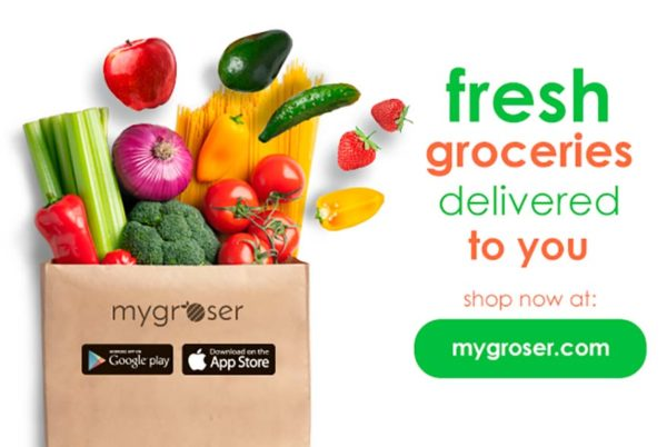 mygroser malaysia first independent fully online grocery store deliver to you
