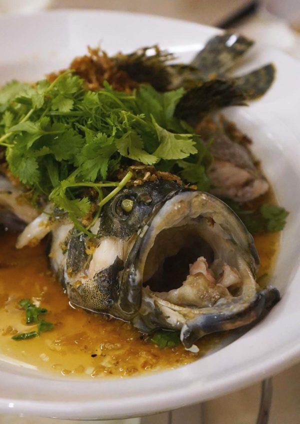 oriental chinese cuisine pullman kl bangsar cny set menu fish