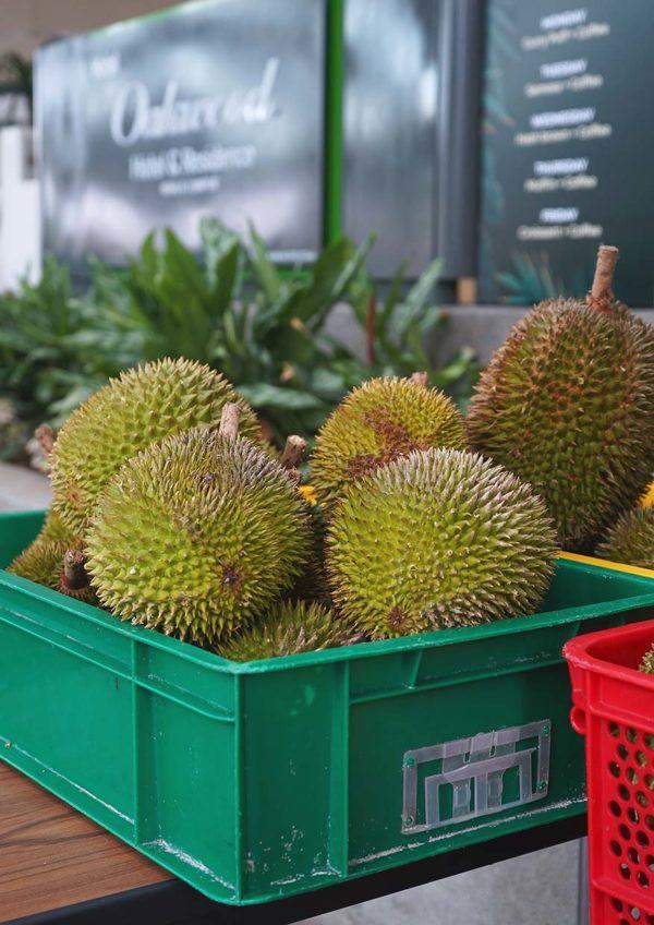 oakwood hotel residence kl durian on the go musang king