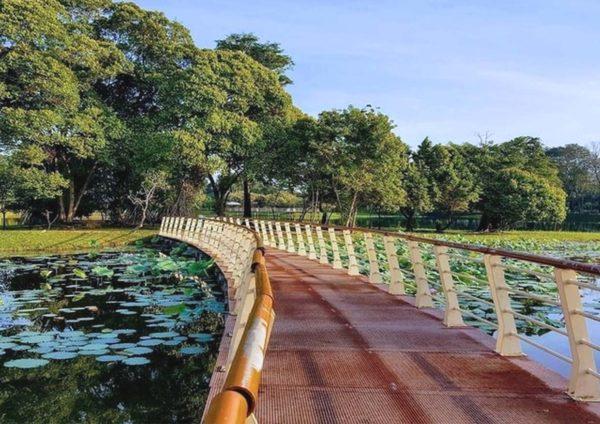sepang selangor travel spot cyberjaya lake gardens