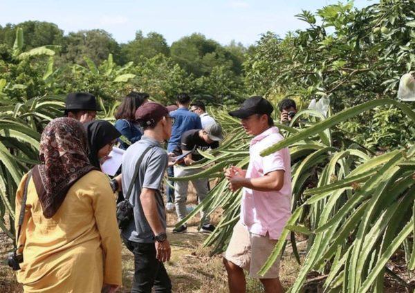 sepang selangor travel spot ladang hl dragon fruit valley