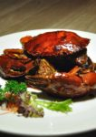 marine harvest international carvery chatz brasserie parkroyal kuala lumpur